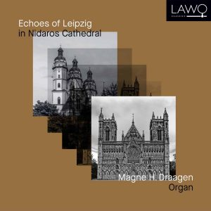 Platecover for Echoes of Leipzig med Magne H. Draagen